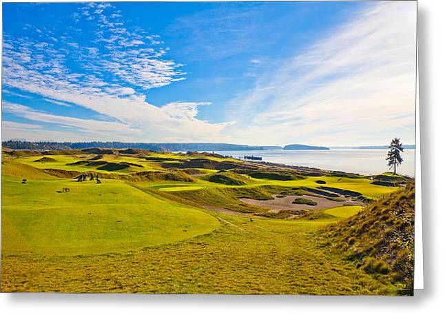 Teeing Off On The 15th - Chambers Bay Greeting Card by David Patterson