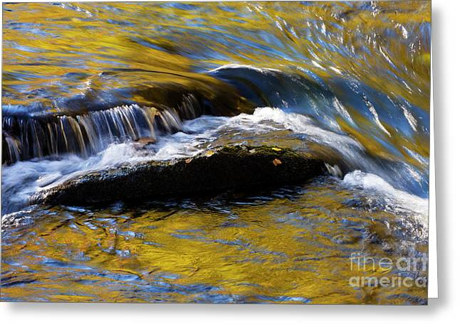 Greeting Card featuring the photograph Tellico River - D010004 by Daniel Dempster