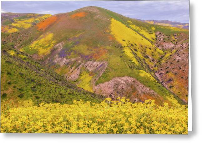 Greeting Card featuring the photograph Temblor Range Color by Marc Crumpler