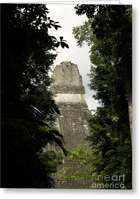 Temple In The Trees Tikal Guatemala Greeting Card by John  Mitchell