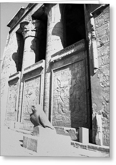Greeting Card featuring the photograph Temple Of Horus by Silvia Bruno