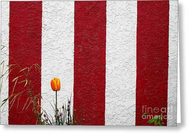 Greeting Card featuring the photograph Temple Wall by Ethna Gillespie