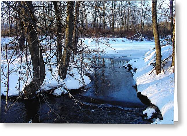 Temporal Calm Of Winter Greeting Card by Terrance DePietro