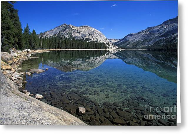 Tenaya Lake Greeting Card by Stan and Anne Foster