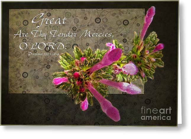 Tender Mercies Greeting Card by Debbie Portwood