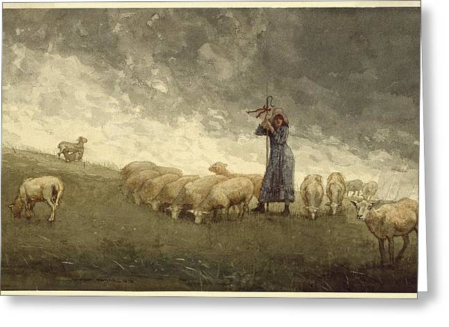 Tending Sheep Greeting Card by Winslow Homer