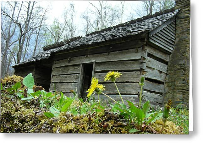 Tennessee Homestead Greeting Card by Linda Russell