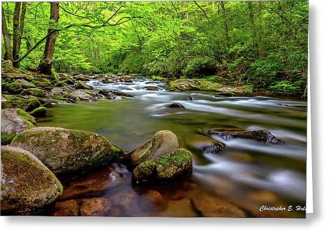 Greeting Card featuring the photograph Tennessee Stream by Christopher Holmes