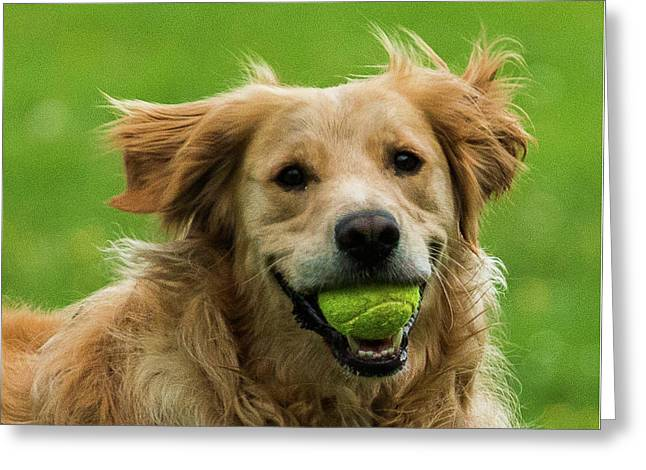 Tennis Is On ..wanna Play? Greeting Card