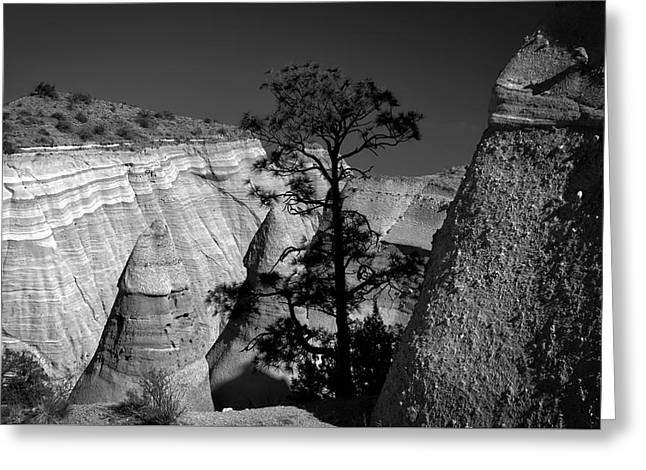 Tent Rocks And Tree Greeting Card