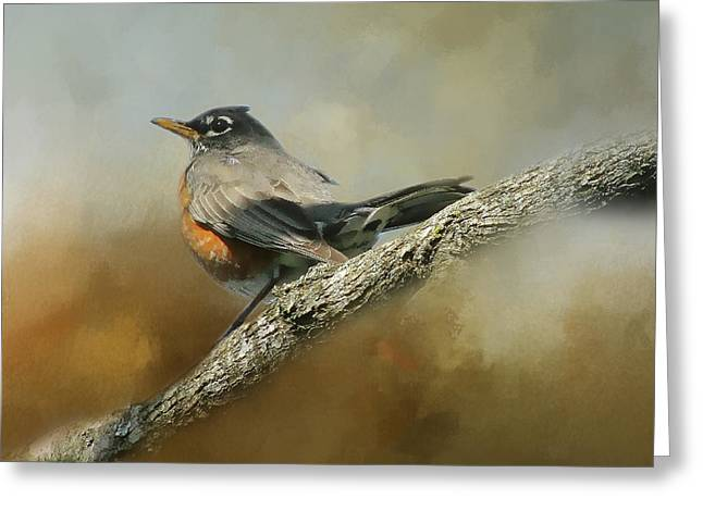 Teressia's Spring Robin  Greeting Card by TnBackroadsPhotos