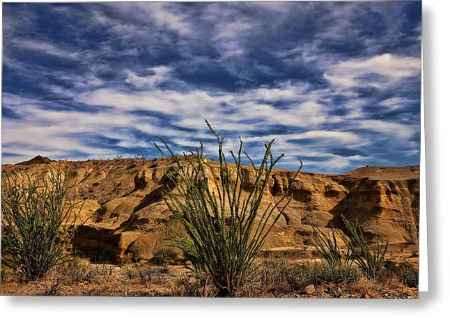 Terlingua Desert 1 Greeting Card by Judy Vincent
