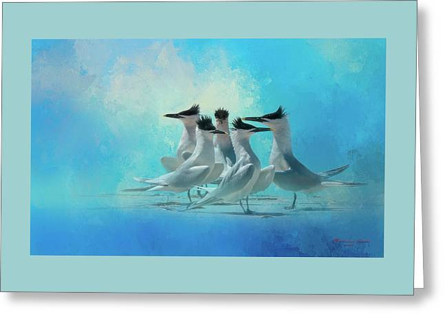 Tern And Look Greeting Card