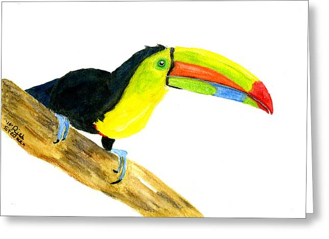 Terry Toucan Greeting Card