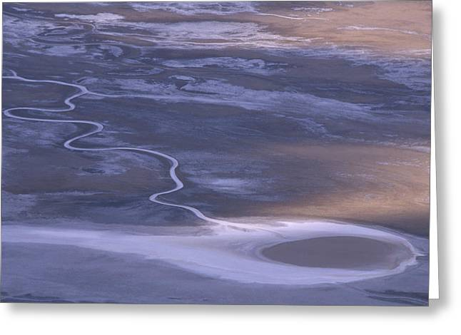 Tethered Comet - Badwater Basin Greeting Card by Soli Deo Gloria Wilderness And Wildlife Photography