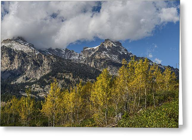 Teton Magic Greeting Card