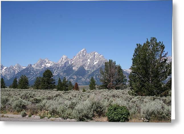 Teton Majesty Greeting Card by Gregory Jeffries