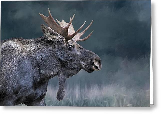Teton Moose Greeting Card
