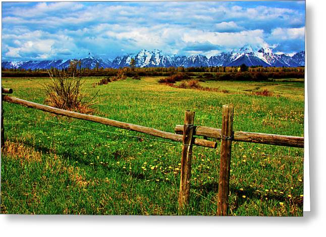 Greeting Card featuring the photograph Teton Park Spring by Norman Hall