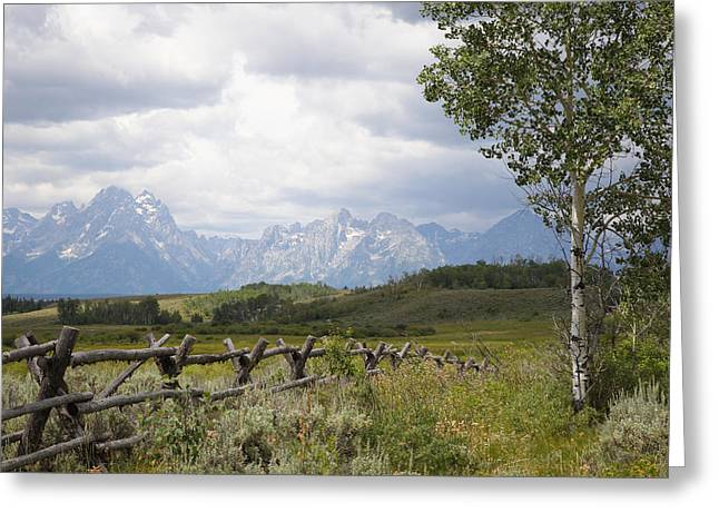 Teton Ranch Greeting Card by Diane Bohna