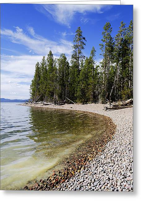 Teton Shore Greeting Card by Chad Dutson