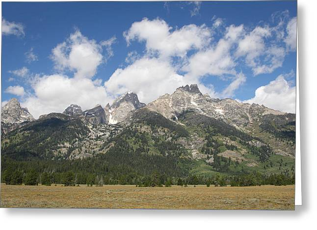 Teton View Greeting Card