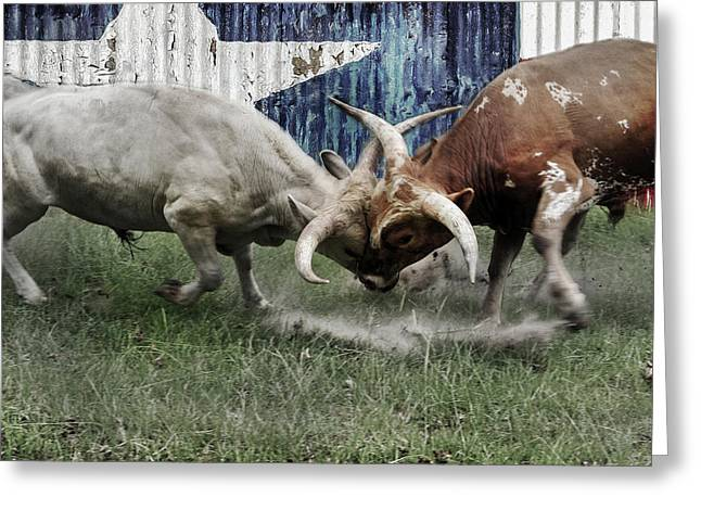 Texas Bull Fight  Greeting Card