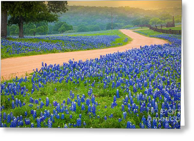 Texas Country Road Greeting Card by Inge Johnsson