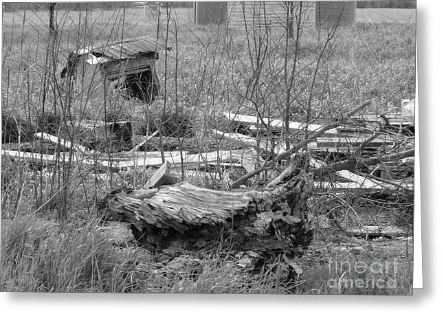 Texas Debris Bw Greeting Card by As the Dinosaur Flies Photography