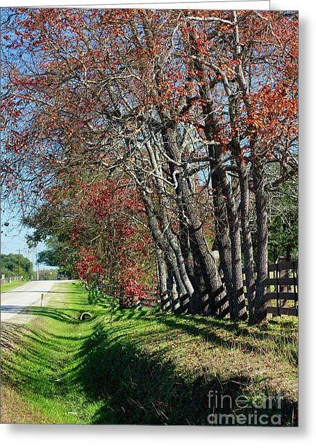 Greeting Card featuring the photograph Texas Fall by Lori Mellen-Pagliaro