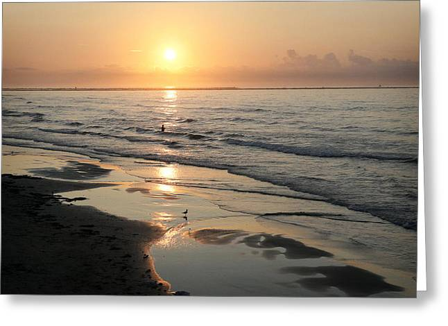 Texas Gulf Coast At Sunrise Greeting Card