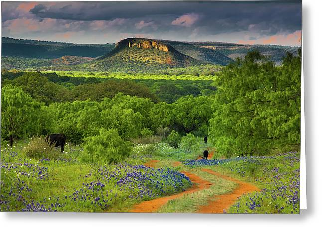 Texas Hill Country Ranch Road Greeting Card