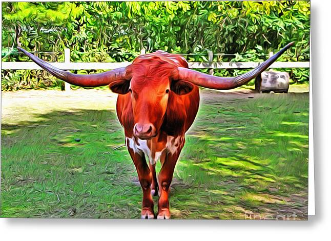 Texas Longhorn 2 Greeting Card by Nishanth Gopinathan