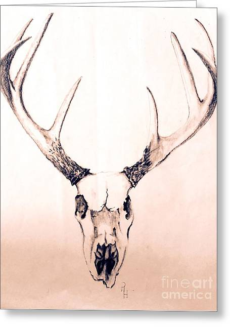 Texas Mount Deer Greeting Card