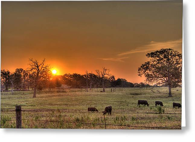 Texas Sunrise Greeting Card by Barry Jones