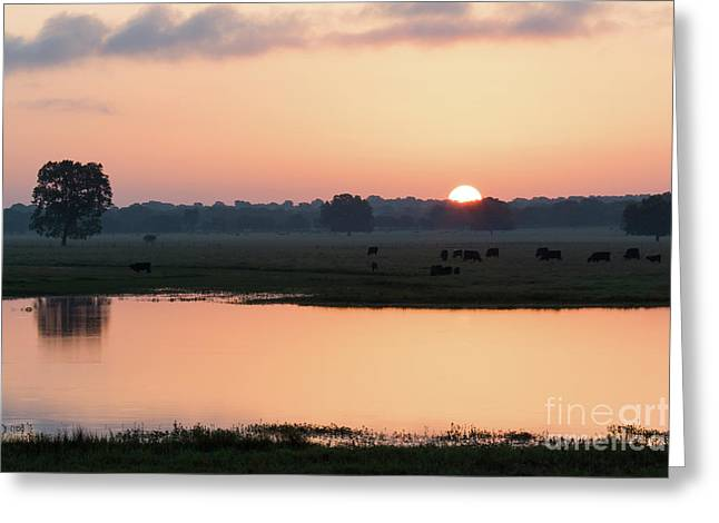 Texas Sunrise Greeting Card