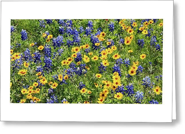 Texas Wildflowers Greeting Card
