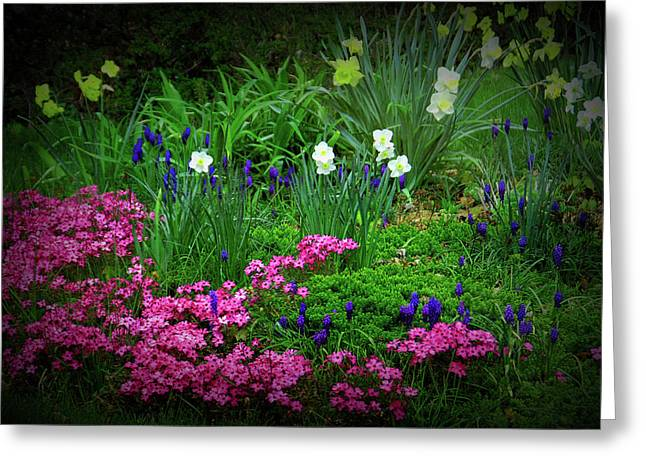 Greeting Card featuring the photograph Texture Drama Garden Escape by Aimee L Maher Photography and Art Visit ALMGallerydotcom