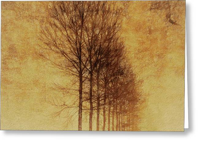 Textured Eerie Trees Greeting Card by Dan Sproul