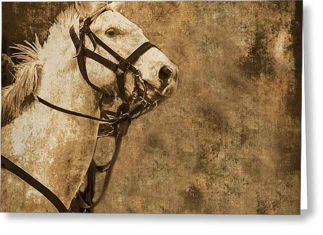 Textured Horse Greeting Card by Kim Henderson