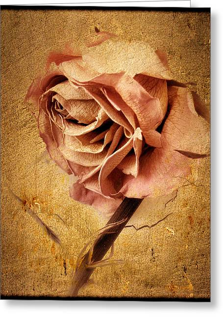 Textured Rose Greeting Card