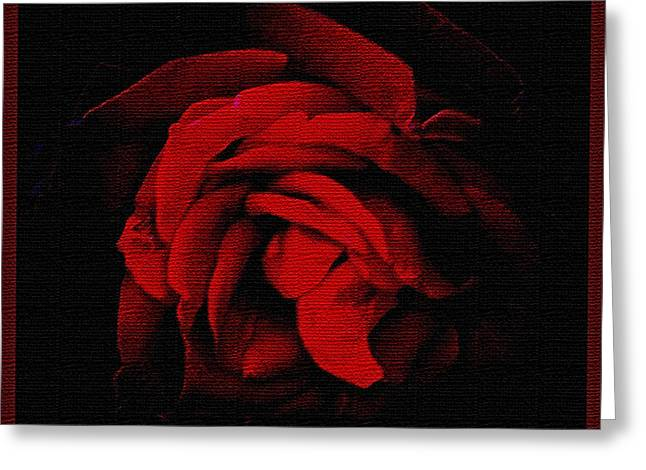 Textured Rose Greeting Card by Russ Mullen