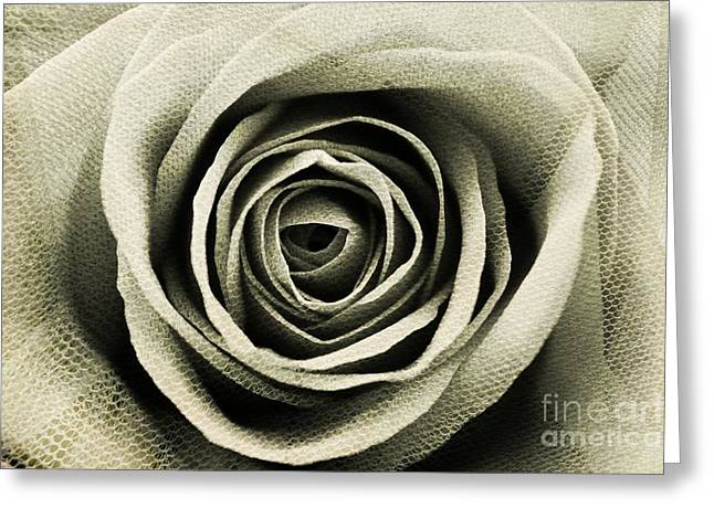 Textured Sepia Rose Greeting Card