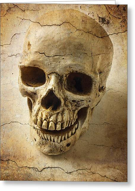 Textured Skull Greeting Card by Garry Gay