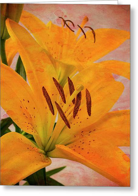Textured Tiger Lily Greeting Card