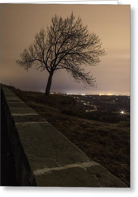 Thacher Park Twilight Greeting Card