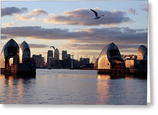 Thames Barrier And Seagulls Greeting Card