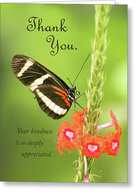 Thank You - Butterfly Greeting Card