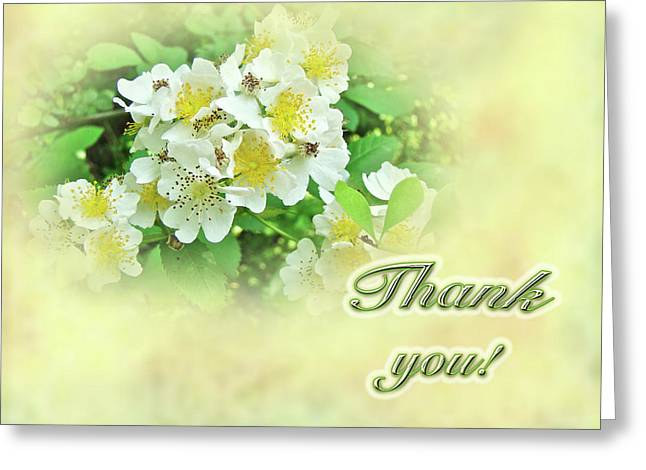 Thank You Card - Multiflora Roses Greeting Card by Mother Nature