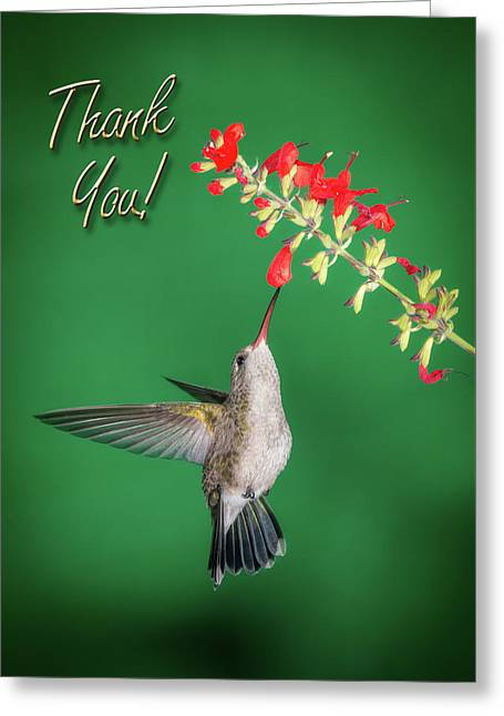 Thank You - Looking Up Greeting Card